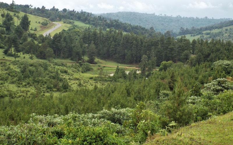 Image result for Kimwarer dam