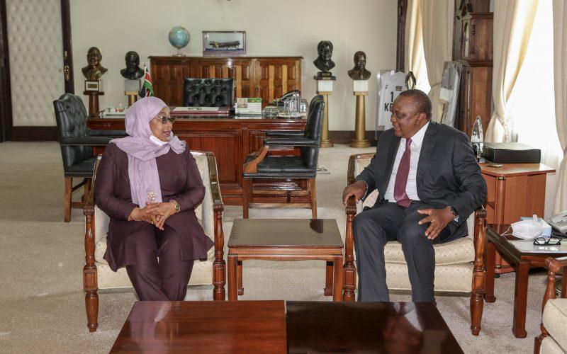 Samia Suluhu during state visit to Kenya